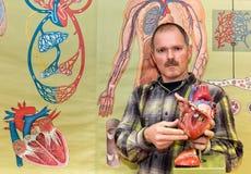 Biology teacher showing human heart model. Biology teacher shows artificial human heart model in front of a wallchart Stock Photo