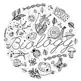 Biology VECTOR Doodles Stock Photography