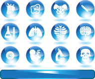 Biology Web Buttons Set Royalty Free Stock Photos