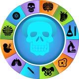 Biology Wheel. Set of 12 Biology Icons - wheel Royalty Free Stock Photos