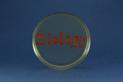 Biology word inscription by living bacteria on petri dish Stock Images