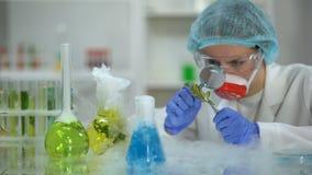 Bioloog die installatie onderzoeken door vergrootglas, pesticidenontwikkeling stock videobeelden