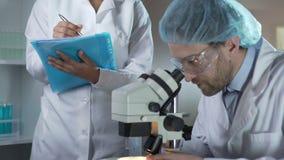Bioloog die steekproeven bestuderen onder microscoop, medewerker die commentaren neerschrijven stock video