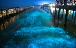 Bioluminescência na água do mar azul da noite Onda fluorescente azul do plâncton bioluminescent sobre a floresta dos manguezais e imagem de stock royalty free