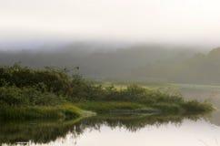 Bioma de Wonderfull de la reserva de naturaleza nacional de Kaw-Roura, francés Guina foto de archivo libre de regalías