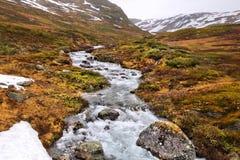 Bioma della tundra in Norvegia Fotografia Stock