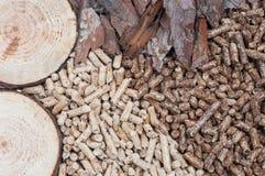 Biomasa Imagen de archivo libre de regalías