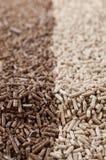 Biomasa de las pelotillas Imagen de archivo libre de regalías