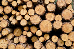 Biomass Stock Images