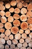 Biomass Stock Photography