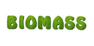 Biomass. Royalty Free Stock Images