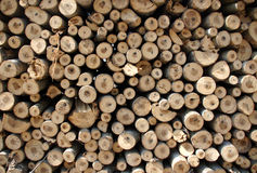 Biomass Royalty Free Stock Images
