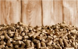Biomass. Boilers biofuel pellet wood fuel bio royalty free stock image