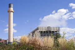 Biomass Cogeneration Plant and Rain Garden Royalty Free Stock Photography