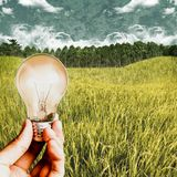 Biomass energy, Sustainable concept. Biomass energy power, Sustainable concept royalty free stock photography