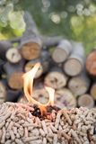 Biomass in fire. Wooden pellets and pile of wood in flames stock image