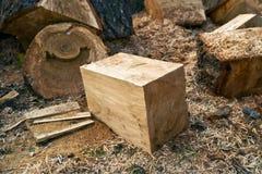 Biomass firewood Stock Image
