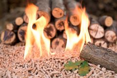 Biomass in flames - оак. Oak biomass in flames - renewable materials and energy stock photos