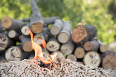 Biomass in flames. Pile of biomass in flames in front wood stock images