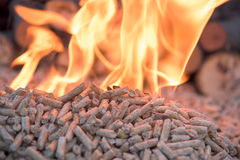 Biomass inn fire. Fir Wooden biomass in flames- close up royalty free stock image