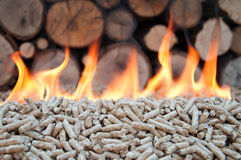 Biomass Royalty Free Stock Image
