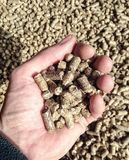 Biomass pellets Stock Image