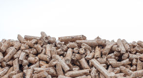 Biomass. Pine pellets on a white background Royalty Free Stock Images