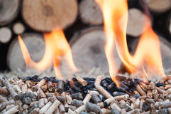Biomass. Pine and sunflower pellets in flames- stock image Stock Photo