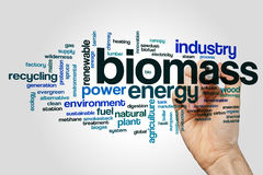 Biomass word cloud concept on grey background.  stock photos