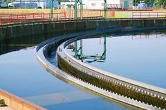 Biomassa Imagem de Stock Royalty Free