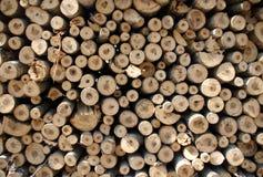 Biomassa royalty-vrije stock afbeeldingen