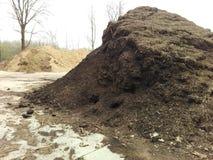 biomassa Stock Afbeelding