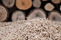 Biomassa de Pelllets- Imagens de Stock Royalty Free