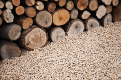 Biomassa de Pelllets- Foto de Stock Royalty Free