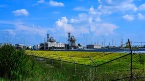 Biomassaelektrische centrale royalty-vrije stock foto's
