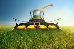 biomassagrinder Royaltyfri Fotografi