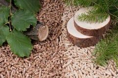 Biomasse de boulettes Image libre de droits
