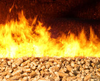 Biomasse-Kugel auf Feuer lizenzfreies stockbild