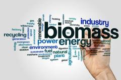 Biomassewort-Wolkenkonzept auf grauem Hintergrund Stockfotos