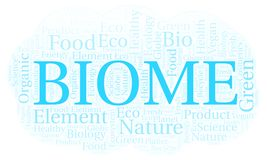 Biome word cloud. Wordcloud made with text only royalty free illustration
