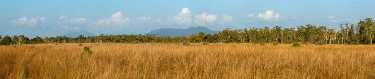 Biome zmierzchu Sawannowy czas z Panoramiczną sceną przy Tropikalnym Deciduous lasu Koh Pratong żołnierza piechoty morskiej parki obraz royalty free