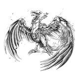 Biomechanic Bird. Original file PNG , you can use for tshirt design or anything Stock Images