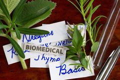 Biomedical Stock Image