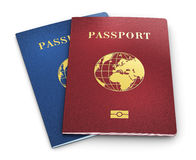 Biometric pass Arkivbild