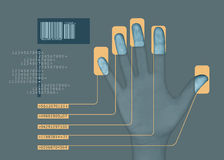 Biometrics 7 v2. Hand interfacing with technology/undergoing a biometric scan Stock Illustration