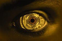 Biometrics- och legitimationbegrepp royaltyfri fotografi