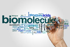 Biomolecule word cloud on grey background Royalty Free Stock Photography