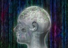 Bionic ludzka głowa z zintegrowanym - obwody i mechanizmy w mózg royalty ilustracja