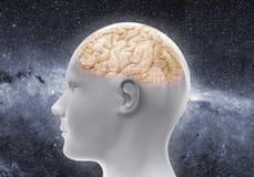 Bionic ludzka głowa z zintegrowanym - obwody i mechanizmy w mózg ilustracji