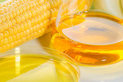 Biopaliwo lub Kukurydzanego syropu sweetcorn obrazy royalty free
